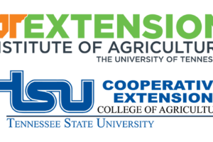 UT Extension and TSU Combined Logo